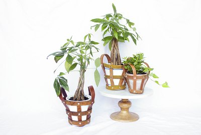 Leather belt plant holders