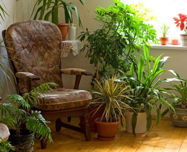 Cozy corner at home