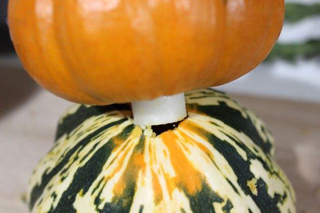 base gourd