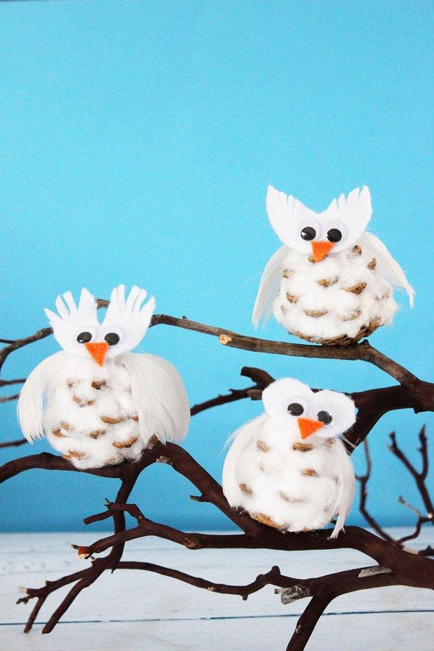 pinecone snowy owls