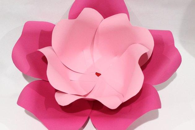 large petals