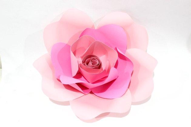 smaller rose