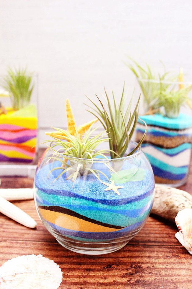 sand art terrariums