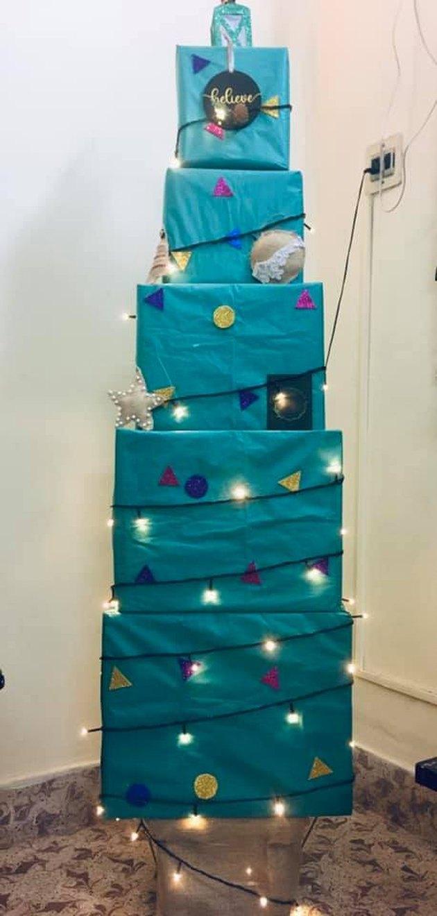 Jessica Smith's Box Tree