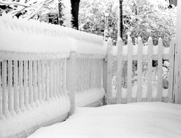 Photo, snow covered fence