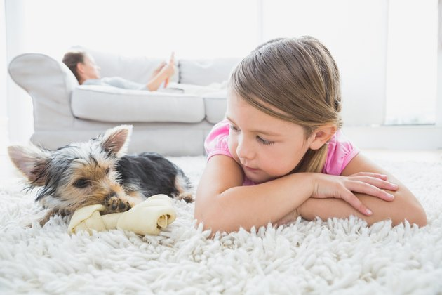 Little girl lying on rug with yorkshire terrier