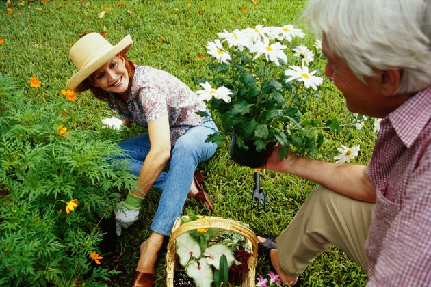 close-up of a mature couple gardening together