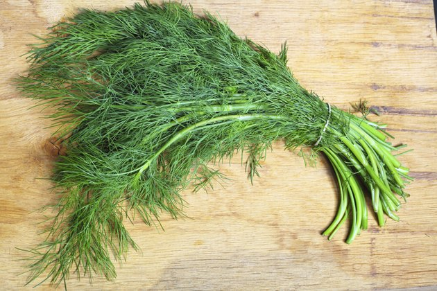 bunch fresh dill herb on wooden table