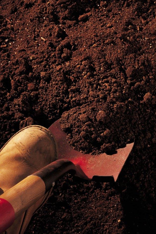 Boot pushing shovel into ground