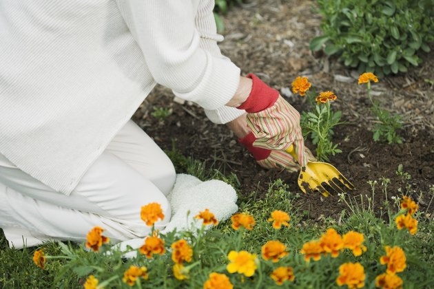 Woman digging into garden soil