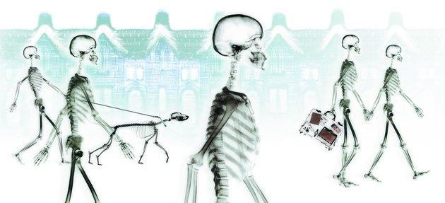 Skeletons walking through neighborhood