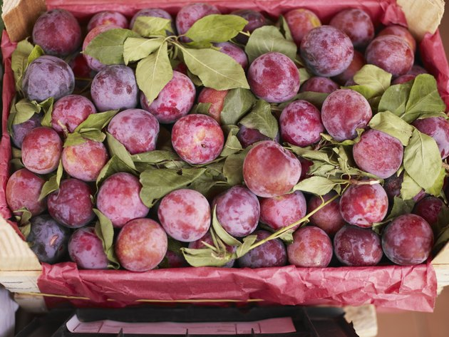 Heirloom plums