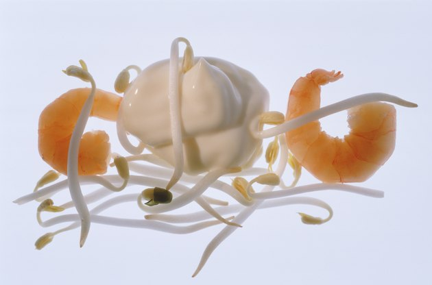Bean sprout, prawn and shrimp on white background, close-up