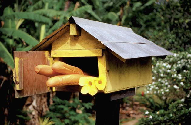 Close-up of fresh baguette and yellow flowers in a wooden mailbox on an island, French Polynesia