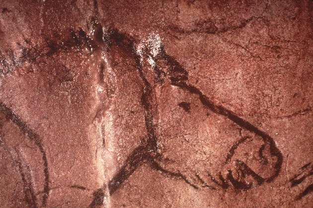 Prehistoric Cave Art Of Horse, France.