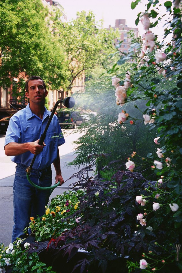 Man watering flower garden