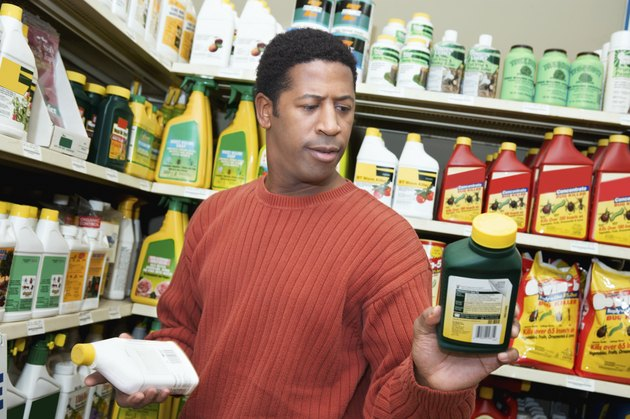 Man Choosing Plant Care Products