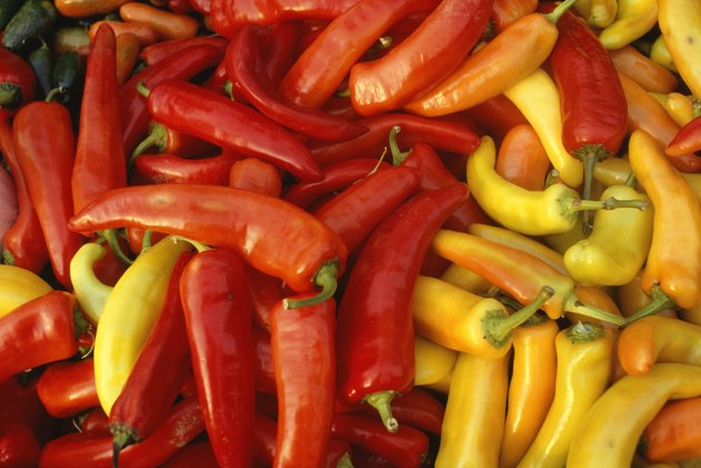 Chilli peppers, Chile, (Close-up)
