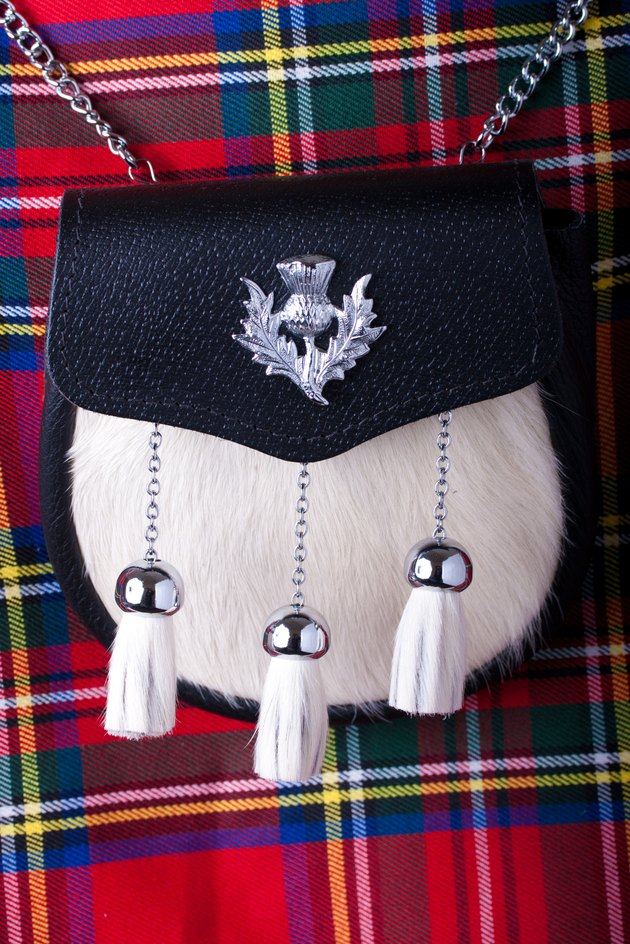 Sporran and kilt