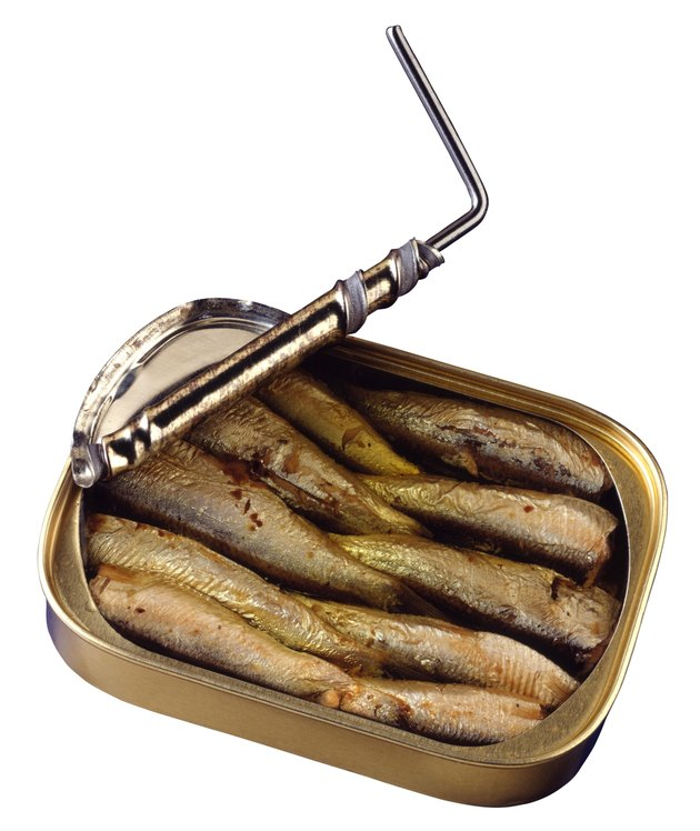 Sardines in tin can