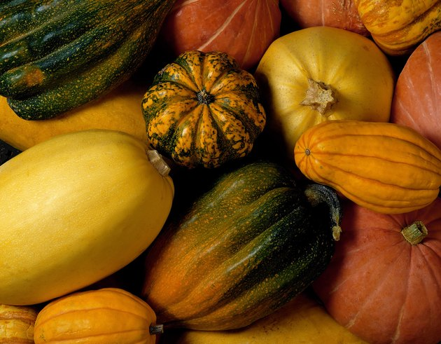 Assortment of squash