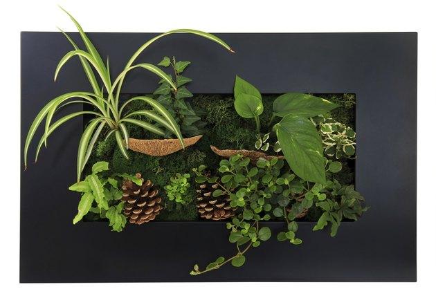 Contemporary wall planter