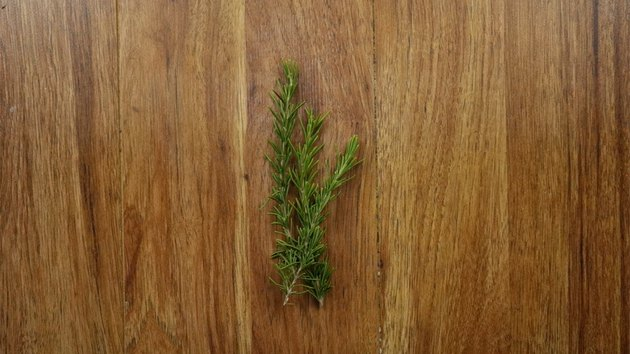 Fresh rosemary sprigs for Christmas wreath gift tags.