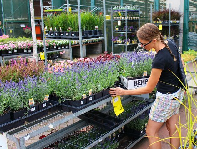Woman shopping for flowers at nursery