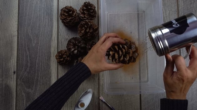 Sprinkling pinecones with ground cinnamon for DIY cinnamon-scented pinecones.
