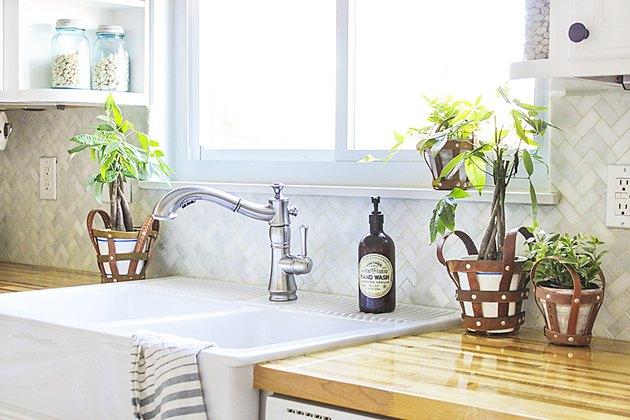 Plant holders next to kitchen sink