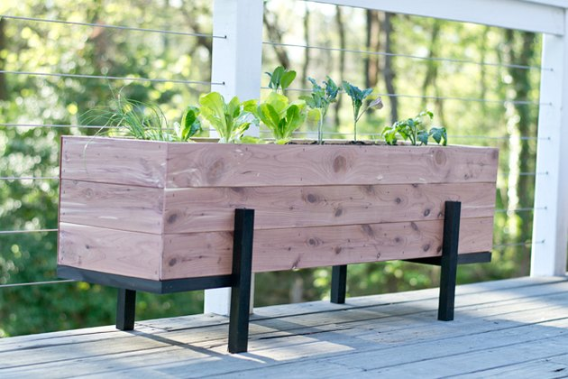 How to build and grow a salad garden on your balcony.