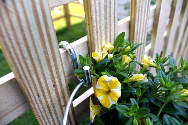 attach galvanized bucket to lattice using an s hook. repeat with other flowers.
