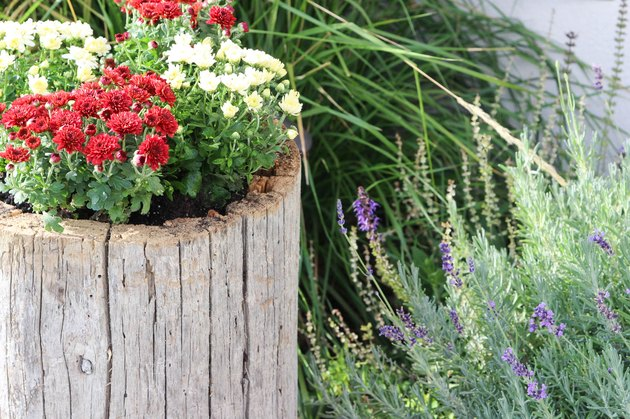 Completed log planter