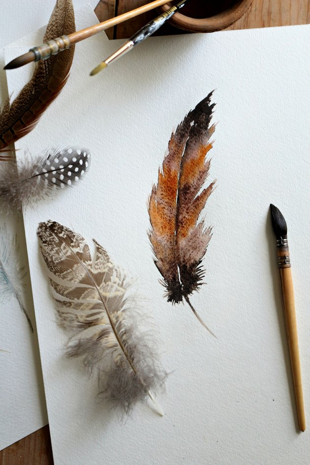 Watercolor feather.