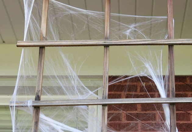 Use spider webs outside.
