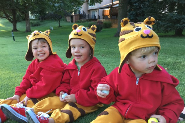 Three Daniel Tigers