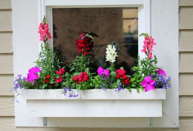 Window box planter with flowers planted