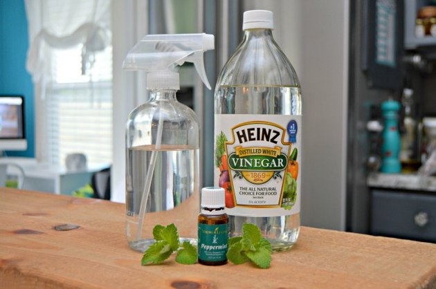 Ingredients for homemade bug spray for plants