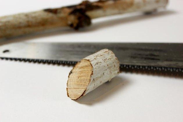 cut branch at angle