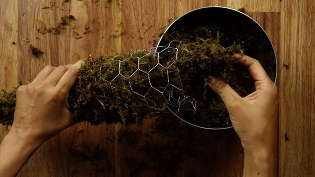 Packing a chicken wire cone form with moist sphagnum moss.