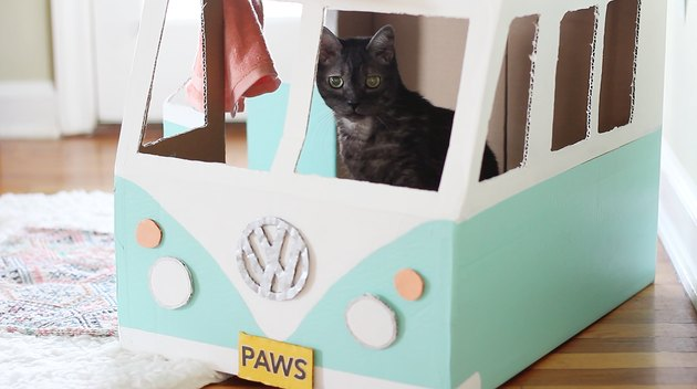 "Yellow ""PAWS"" license plate glued to front"