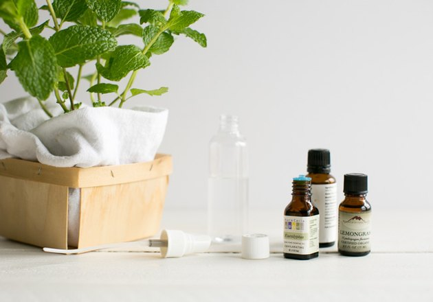 Peppermint Oil Insect Repellant Spray