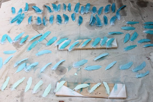 Spray paint feathers
