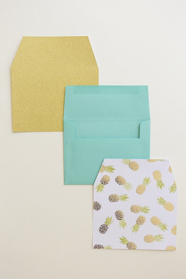 Envelope and two envelope liners.