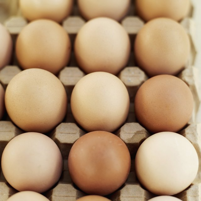 Elevated view of farm eggs