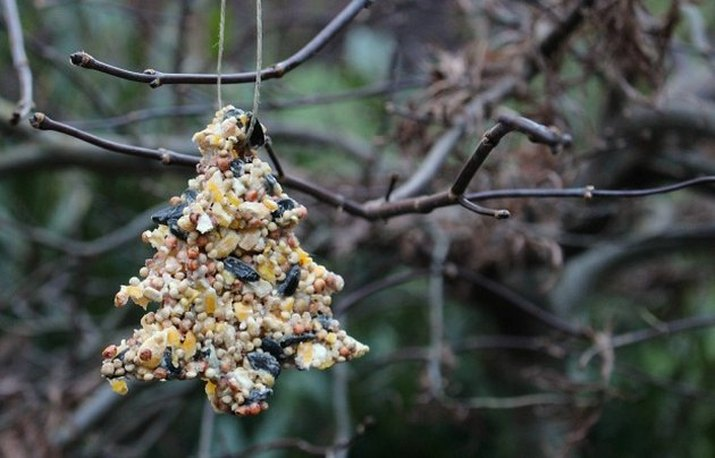 A handmade birdseed ornament in the shape of a Christmas tree, hanging outdoors on a bare branch