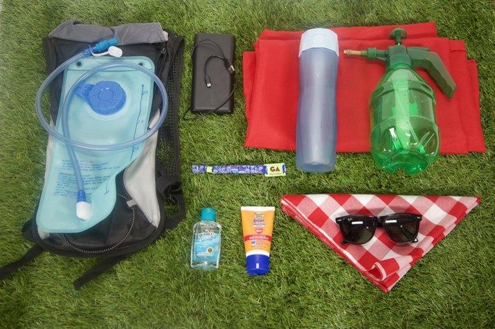Musical Festival Survival Kit