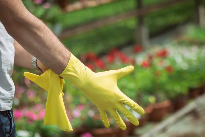 Close up of man putting on yellow cleaning gloves