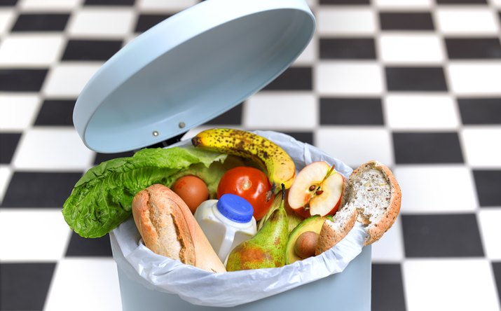 Kitchen bin with out of date food