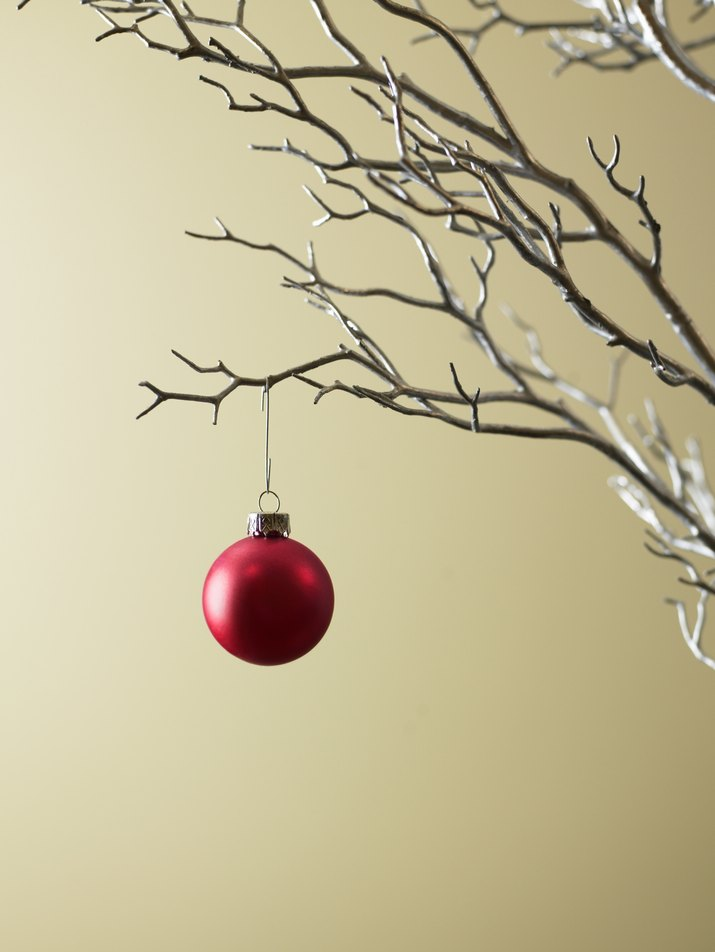 Red Christmas ornament hanging from tree